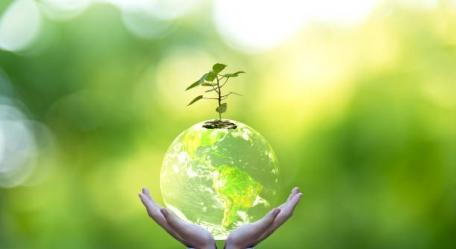 Atitudes ambientais ajudam empresas a andarem na fila e irem à vitrine